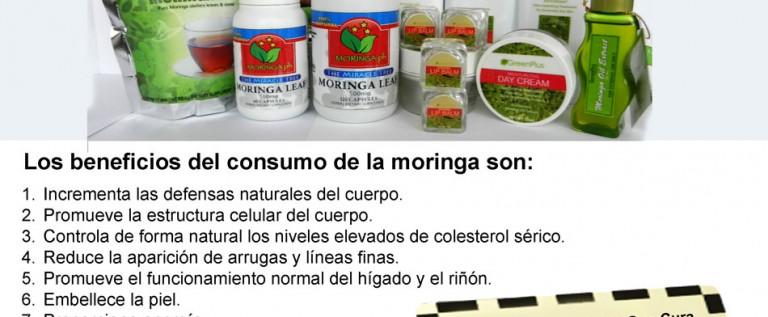 Moringa950