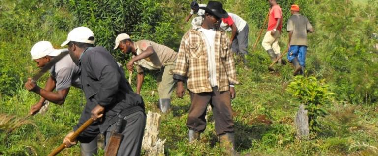 Acuerdan aumentar un 14% el salario mínimo en la República Dominicana