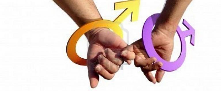 Marcha gay para exigir seguro médico para las parejas en México