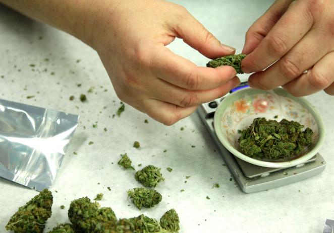 Nueva campaña por la marihuana medicinal en Florida