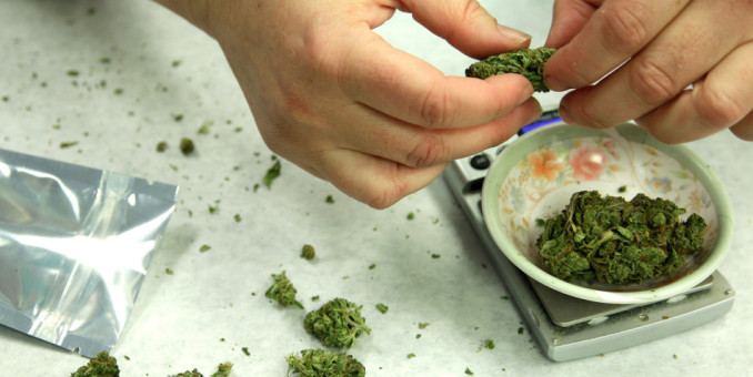 La marihuana genera buenos ingresos en Estados Unidos