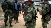 Mueren dos miembros de las FARC y cinco más son capturados por ejército colombiano