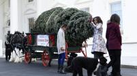 Arriba árbol de Navidad a la Casa Blanca