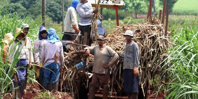 Gran interés de agricultura de EEUU por comercio con Cuba