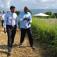 R. Dominicana y Haití acuerdan acciones contra mosca que afecta agricultura