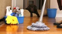 Limpiar la casa con cloro eleva el riesgo de infecciones infantiles