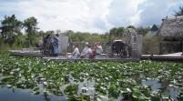 """Los Everglades: """"zona cero"""" contra el cambio climático"""