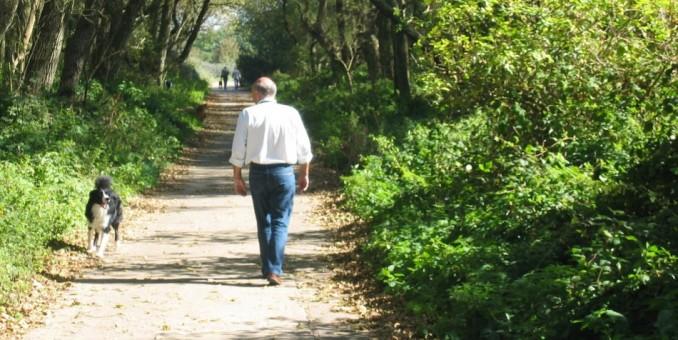Con solo salir a caminar después de comer se puede frenar la diabetes