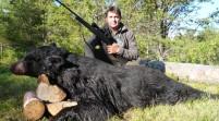 Florida autoriza caza de osos negros por primera vez en dos décadas