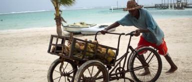 Furia de Erika golpea Dominicana, tras devastar la isla Dominica